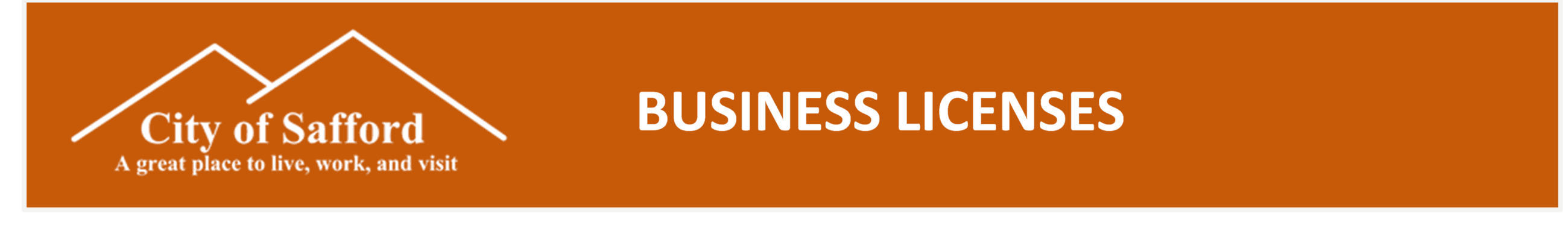 Business Licenses.docx